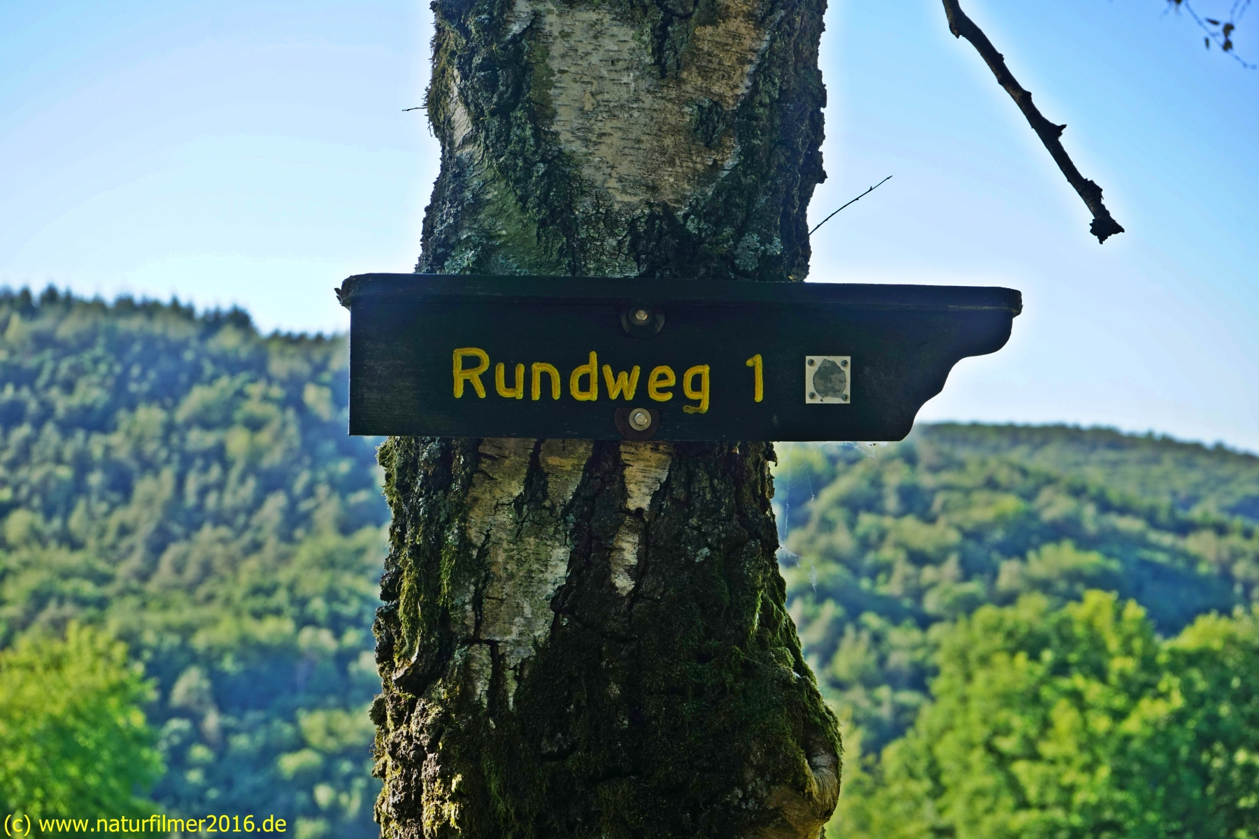 20200528_taben_rundwanderweg1_4000er-28