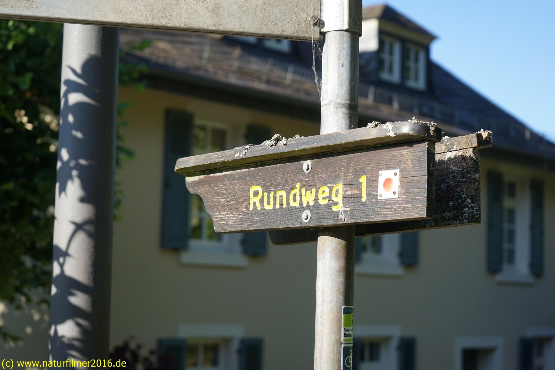 20200528_taben_rundwanderweg1_4000er-37