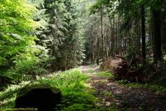 20200524_taben_rundwanderweg4_4000er-34