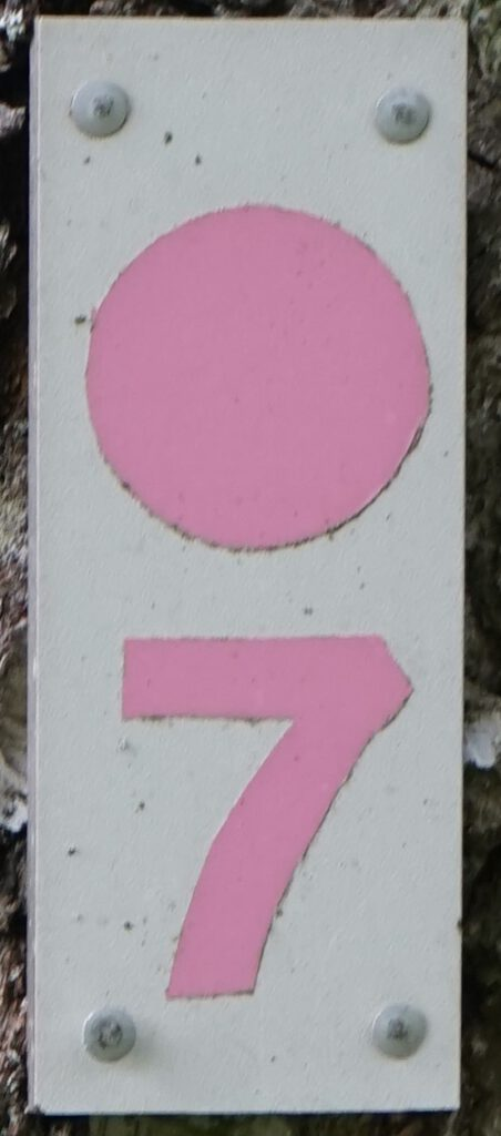 Taben-Rodt, Rundwanderweg7, Markierung