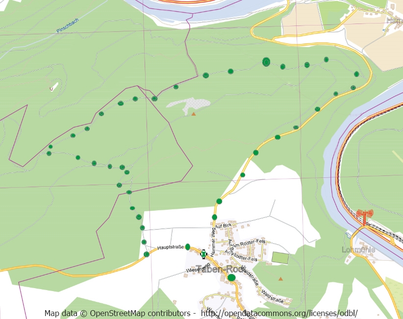 Taben-Rodt Rundwanderweg 3, Streckenverlauf