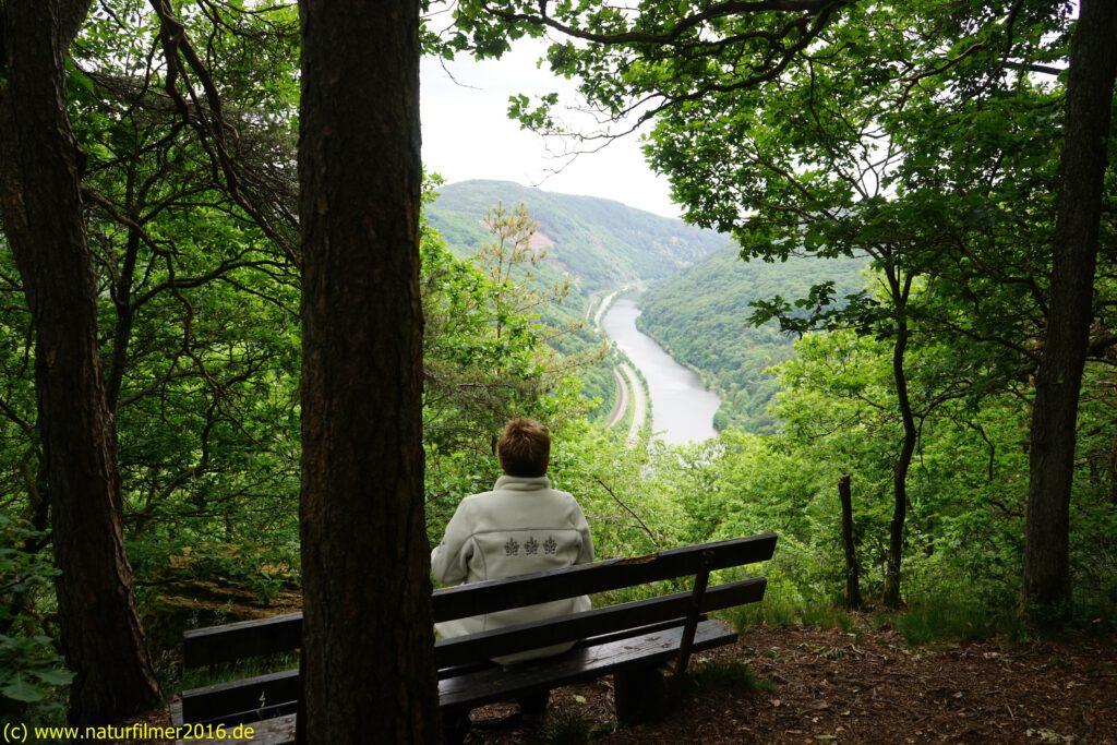 Taben-Rodt Rundwanderweg 7, Aussichtspunkt Koppelfels, Saartal